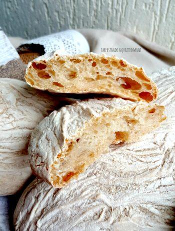 pane ciabatta a lievitazione naturale con lievito madre