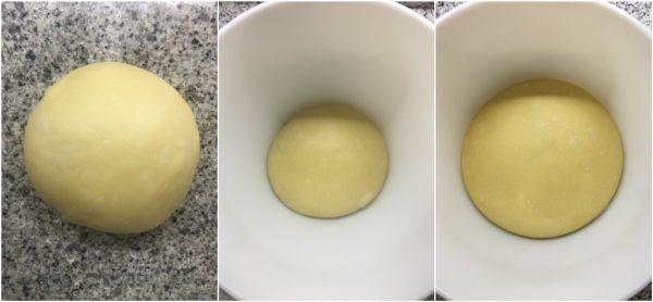 preparazione del panettone a lievitazione naturale al pistacchio e cioccolato bianco, lievitazione primo impasto